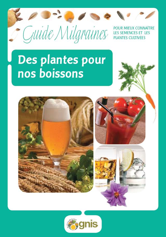 Semencemag des plantes pour nos boissons for Acheter des plantes