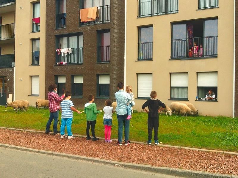 Entretien avec guillaume leterrier berger urbain for Les espaces verts urbains