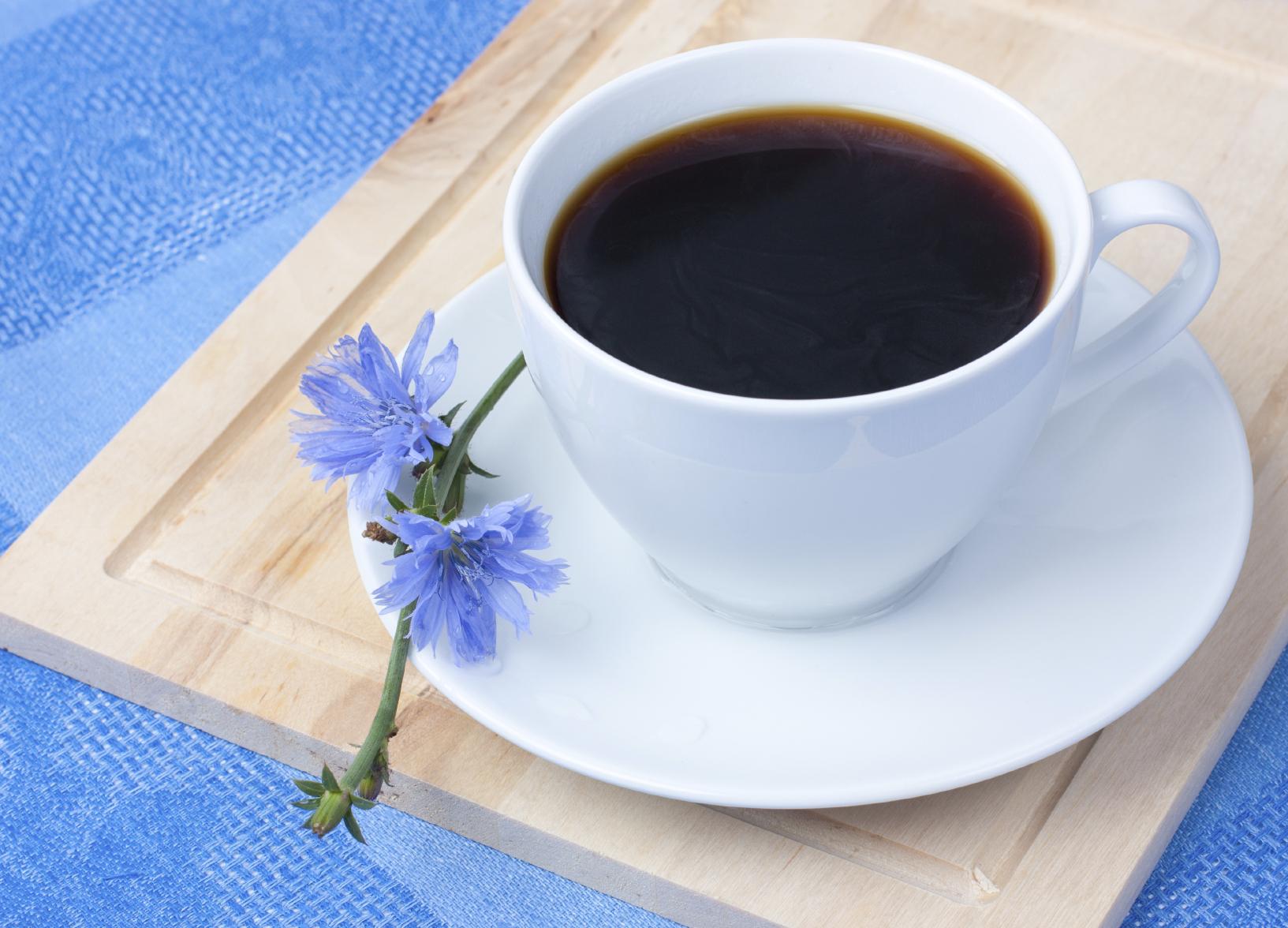 Café Noisette C Est Quoi les bienfaits et les utilisations que nous offre la chicorée