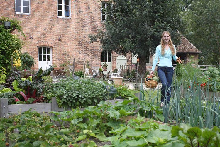 Gazon l gumes fruits et fleurs anciennes et nouvelles for Jardin urbain permaculture