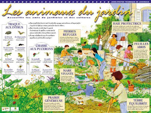 Les animaux du jardin for Au jardin les amis menu