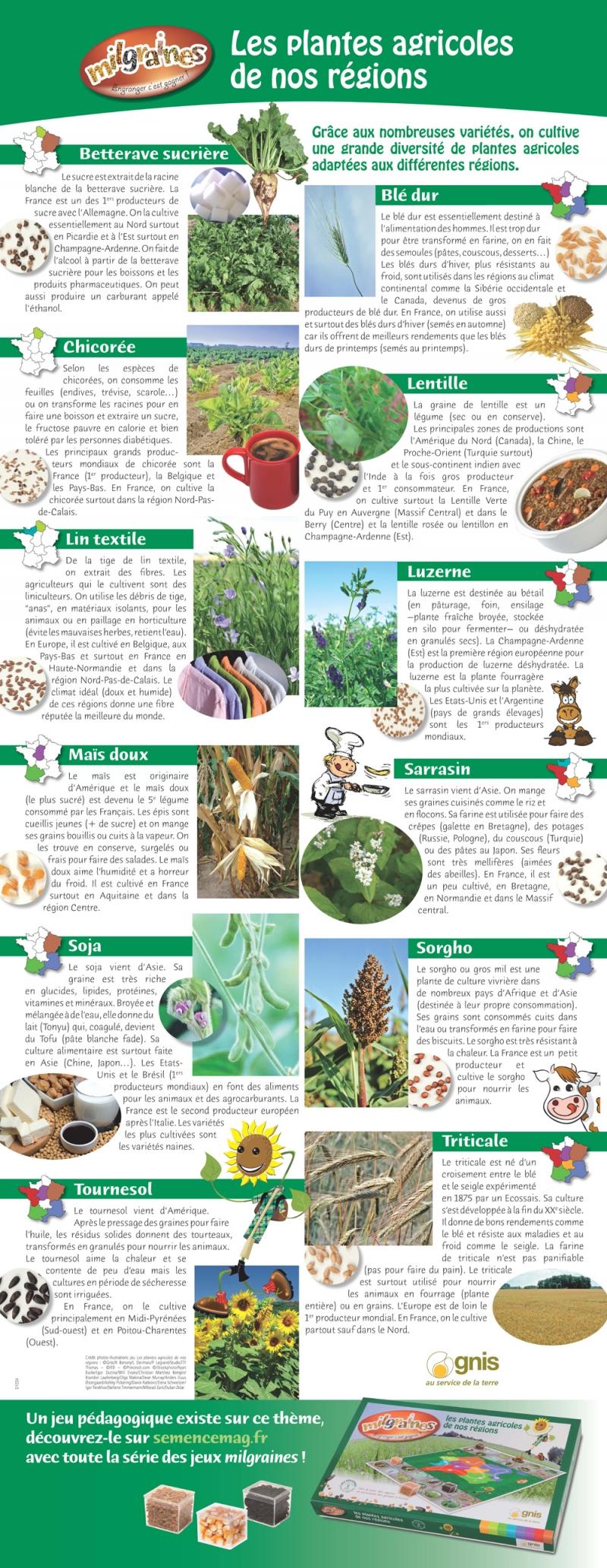 La diversit des plantes de nos r gions for Catalogue de plantes